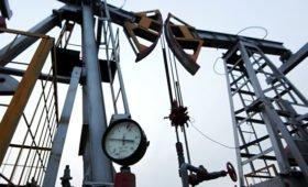 Россия не планирует наращивать добычу нефти, заявил Новак