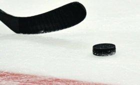 В Канаде предложили сделать арены клубов НХЛ временными больницами