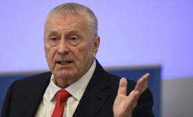Жириновский предложил ограничить возвращение в Россию трудовых мигрантов