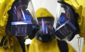 Разные заразные. Какой именно штамм нового коронавируса попал в Москву