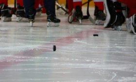 Стало известно, кто с кем сыграет в первом раунде плей-офф НХЛ