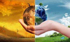 Неизвестное ранее свойство почвы поможет предсказать изменение климата