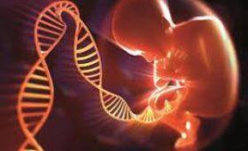 Трое ученые сели в тюрьму за создание генномодифицированных детей