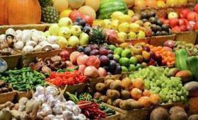 Врач Гинзбург назвал самые полезные для организма продукты