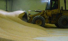 На Тамбовщине построят грузовой терминал Объединенной зерновой компании