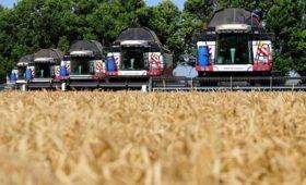 В Ростовской области завершили хлебоуборку