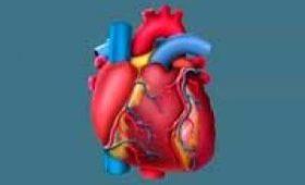 Коронавирус может нарушить работу сердца, даже у здорового человека