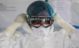 Вирус Эбола неисчезает после выздоровления